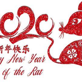 2020 Happy Lunar New Year!